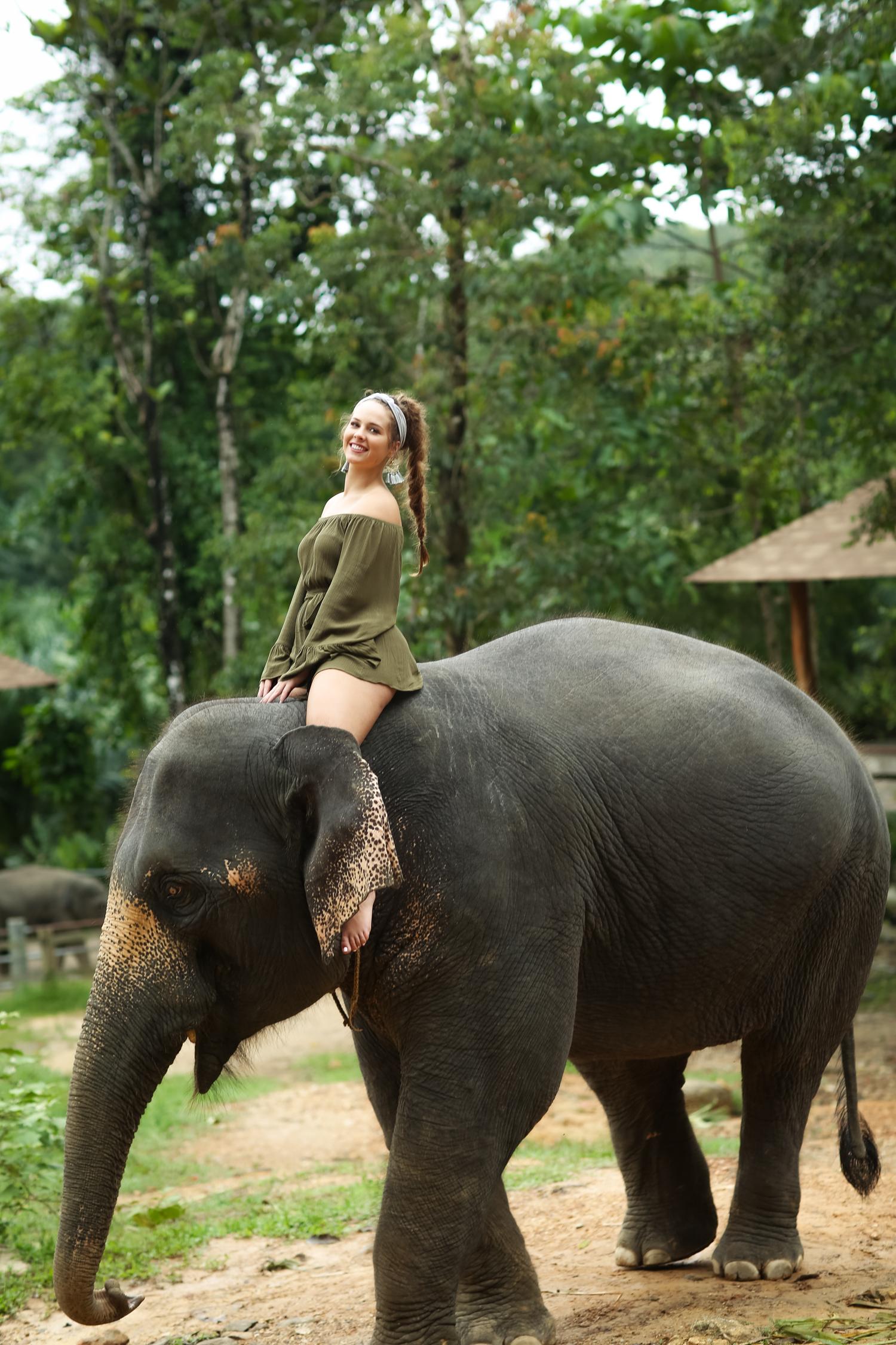 elephant-46.jpg