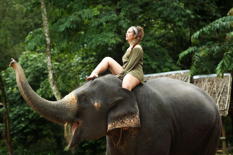 elephant-48.jpg