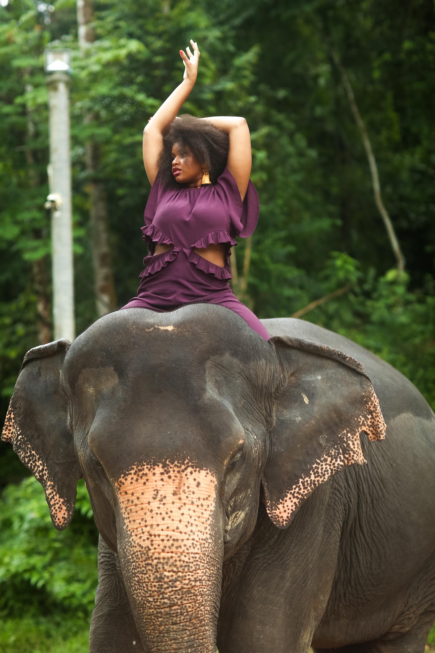 elephant-58.jpg