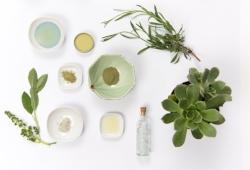 herbs plant-based natural ingredients