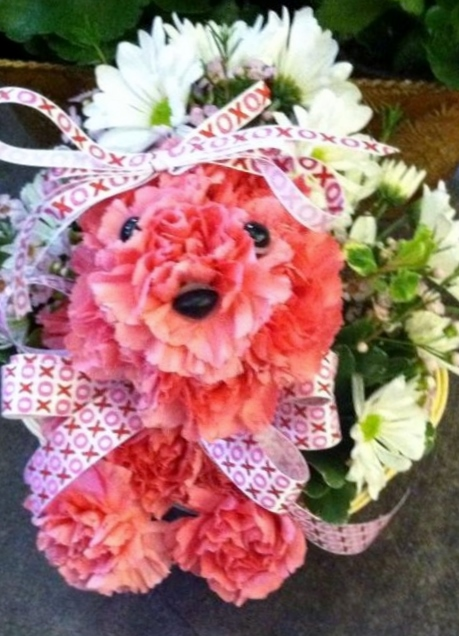 Flowerdog.jpg