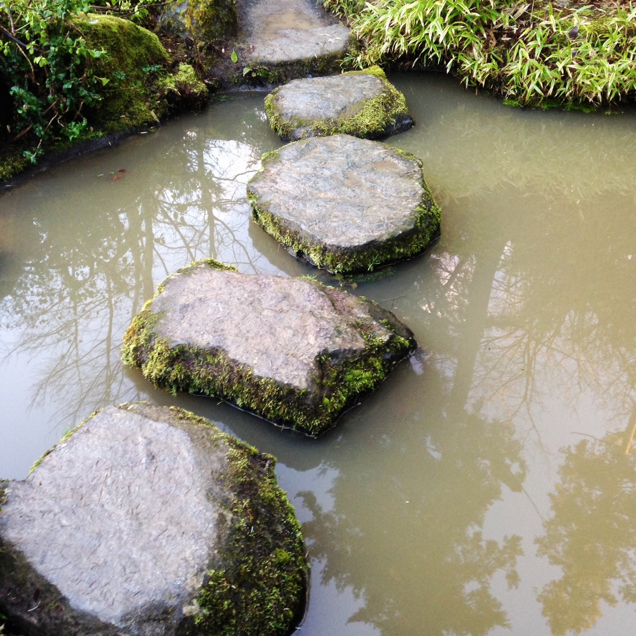 mossy stepping stones in Seattle's Kubato Garden