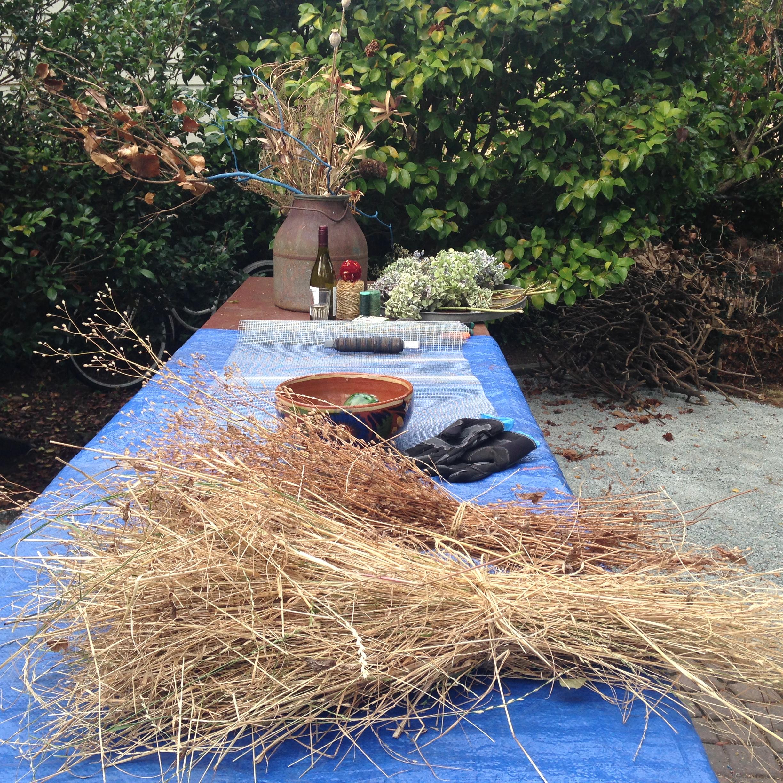 Beautiful bundles of dried grass