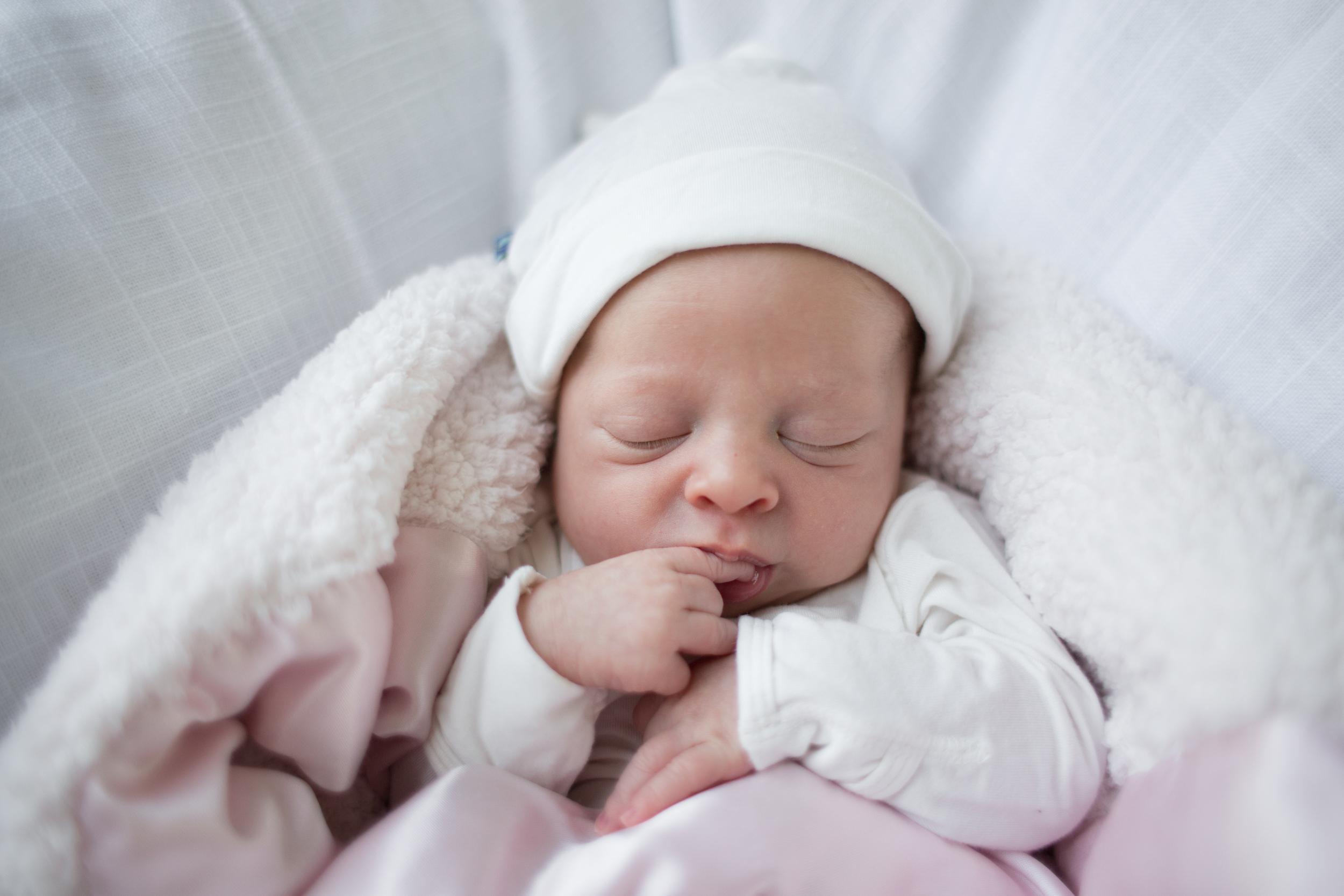 josie 10 days old-18.jpg