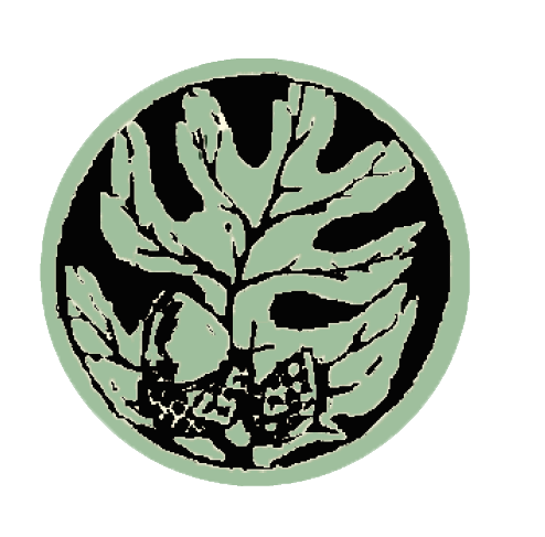 Acorn logo only.png