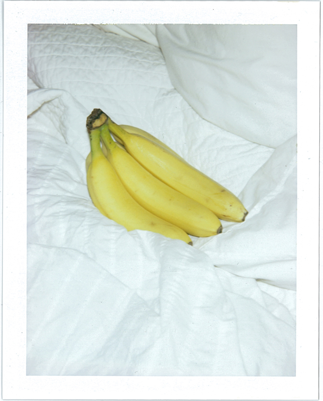 banana_bed_lo_op.jpg
