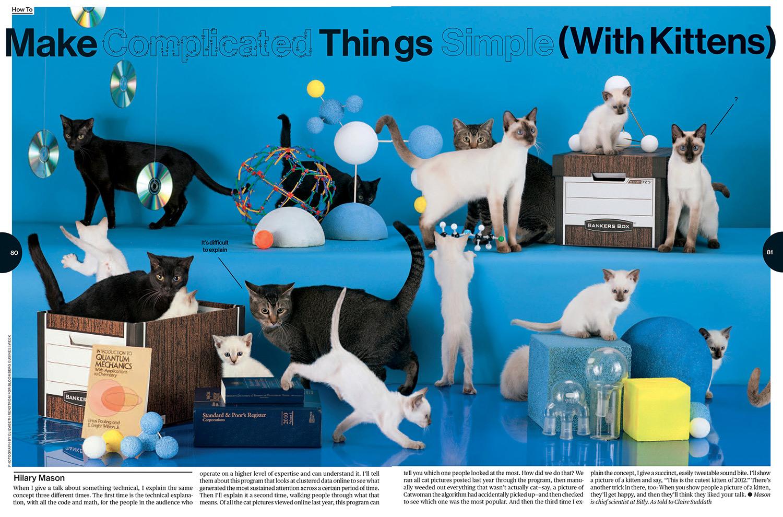 how_to_kittens_lo_op.jpg