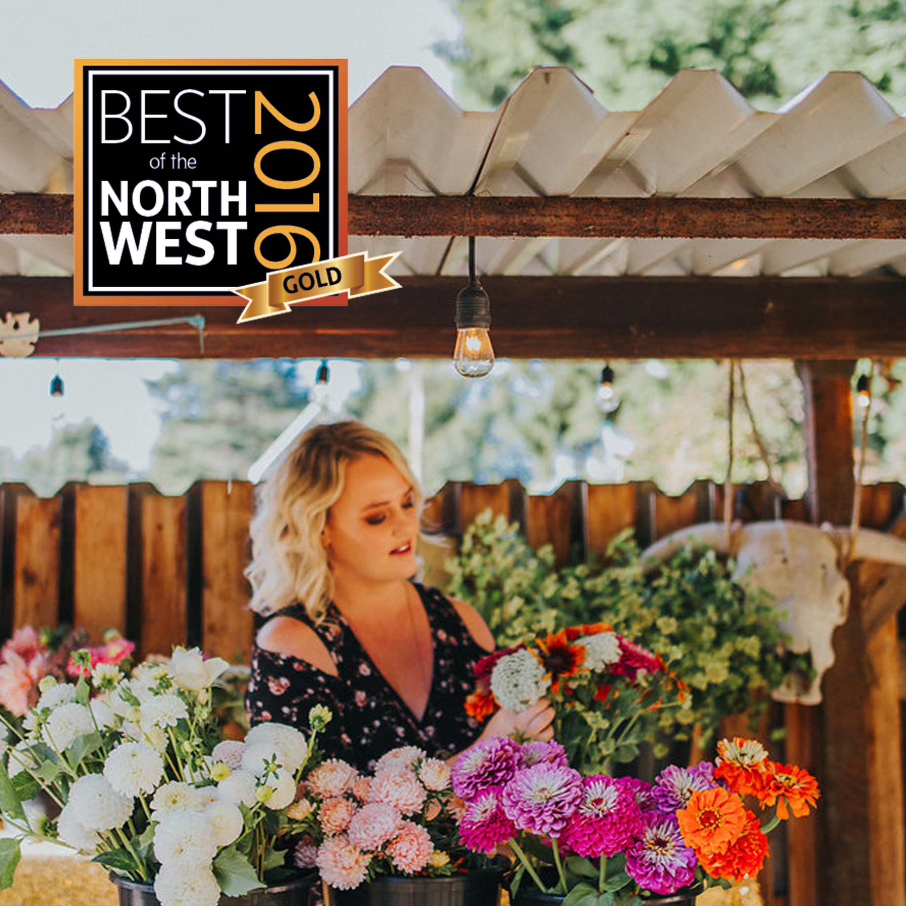 Won 'Best Florist' in Bellingham Alive, 3 years in a row (2016-2018).