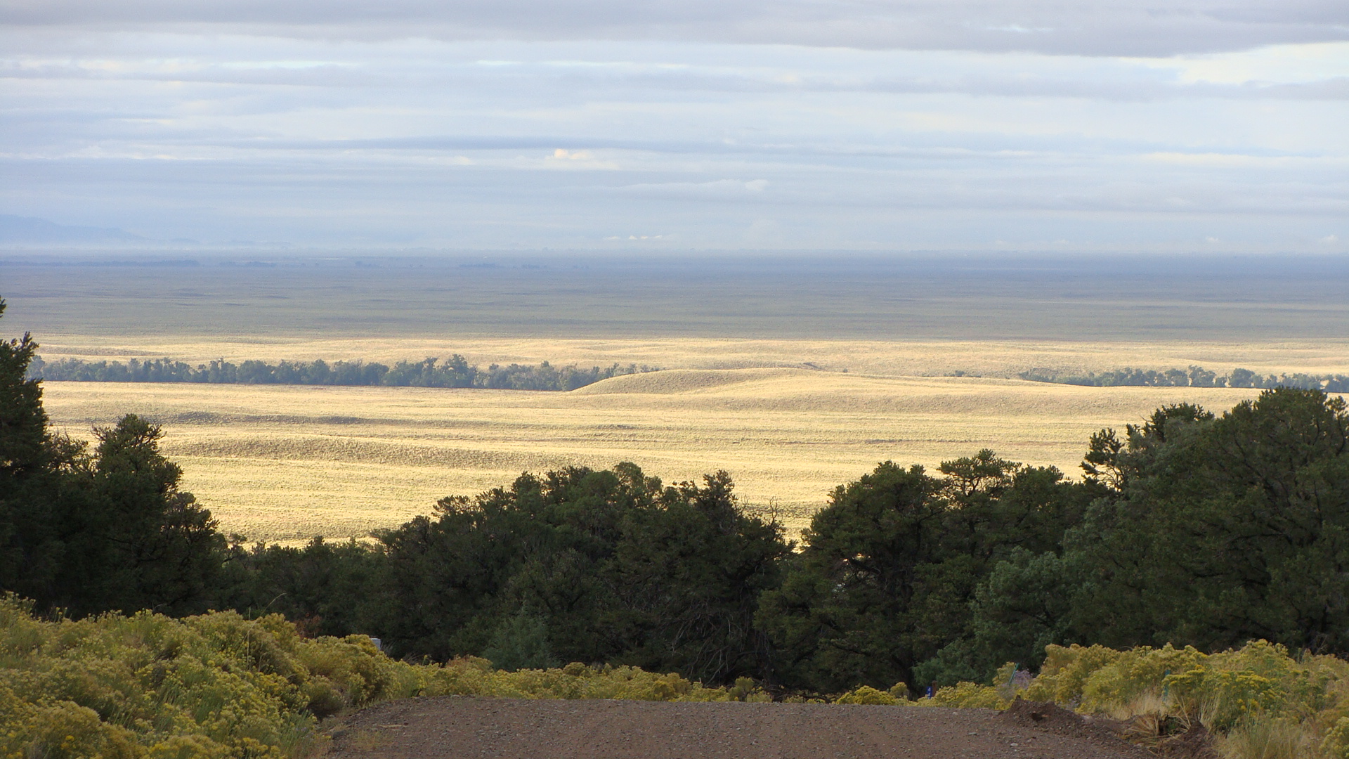 In awe of the beauty and vastness of the San Luis Valley - my view when I'm not looking at the mountains. More gratitude!