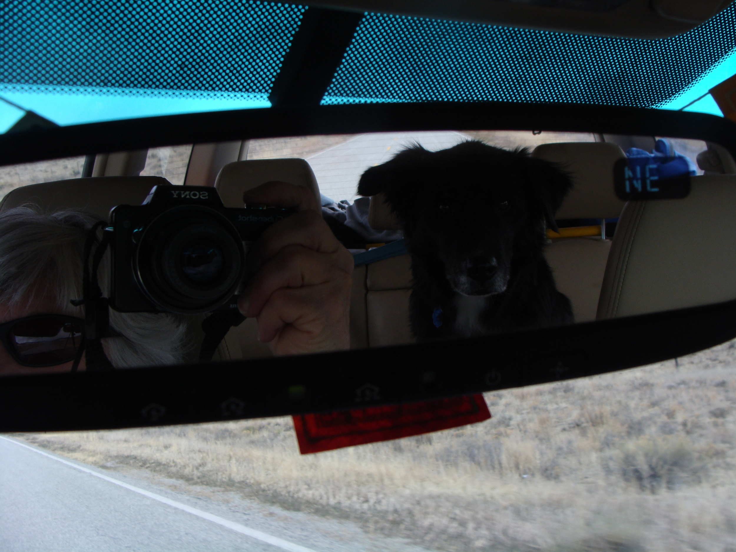 Mirror Selfie & Cool Hand Luke Skywalker on the the Road