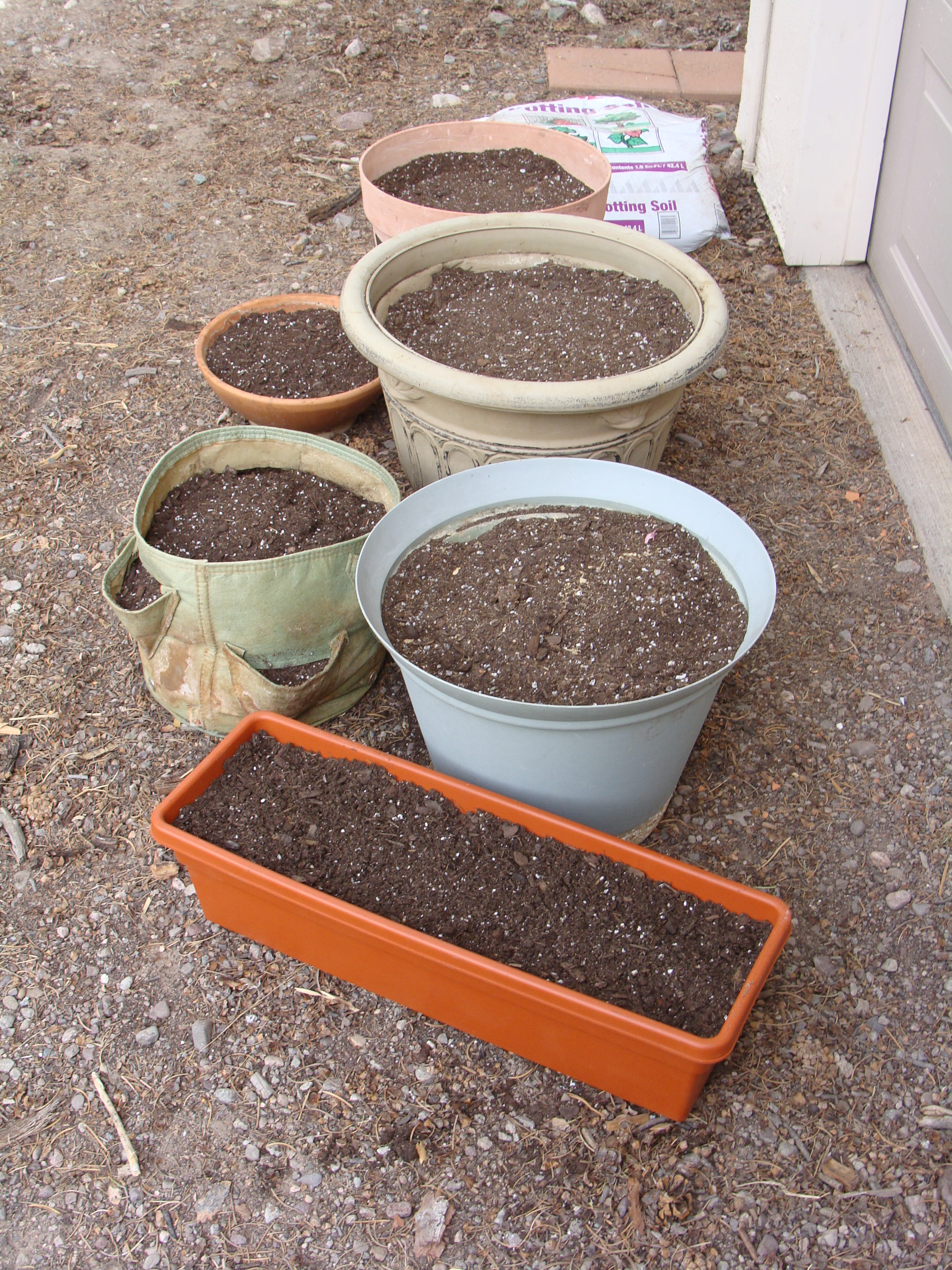 Planting Day has finally arrived ... pots ready (check) ...