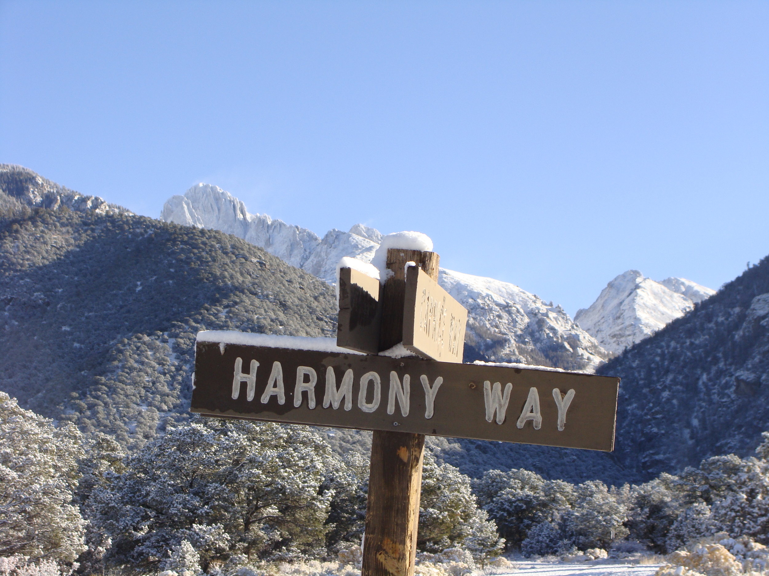 Harmony IS the Way!