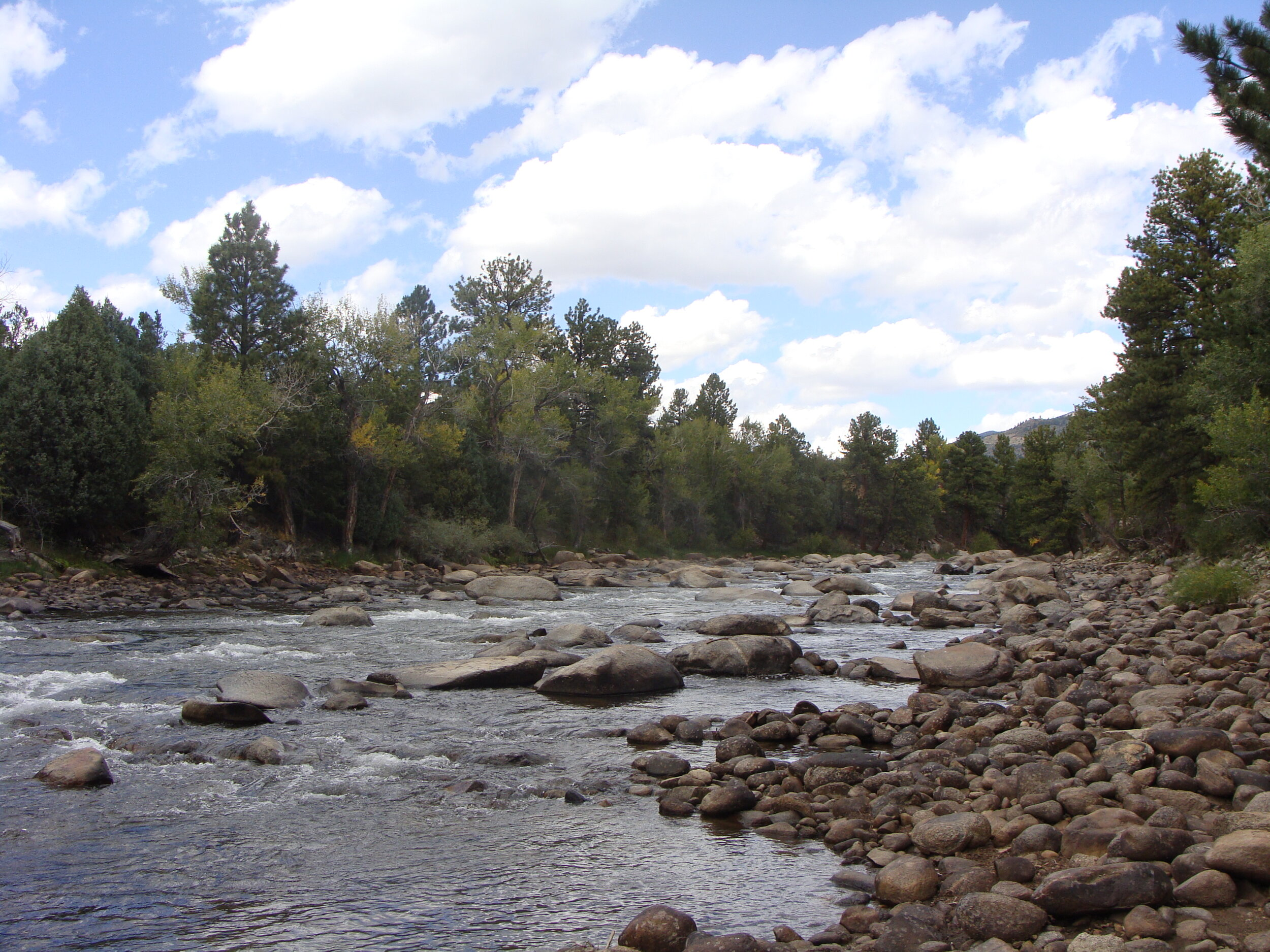 Grateful for the water, the trees, the rocks, the sky … the beauty along the Arkansas River