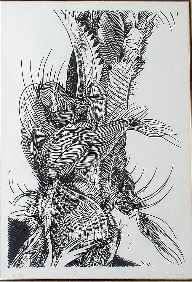 "Palm Tree, 1967, etching, 19"" x 15 1/2"""