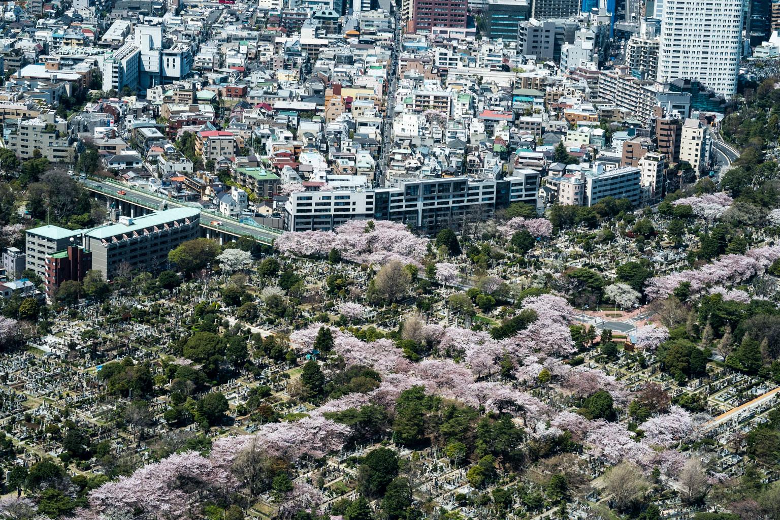 120410_PR_Japan_06_F10816.jpg