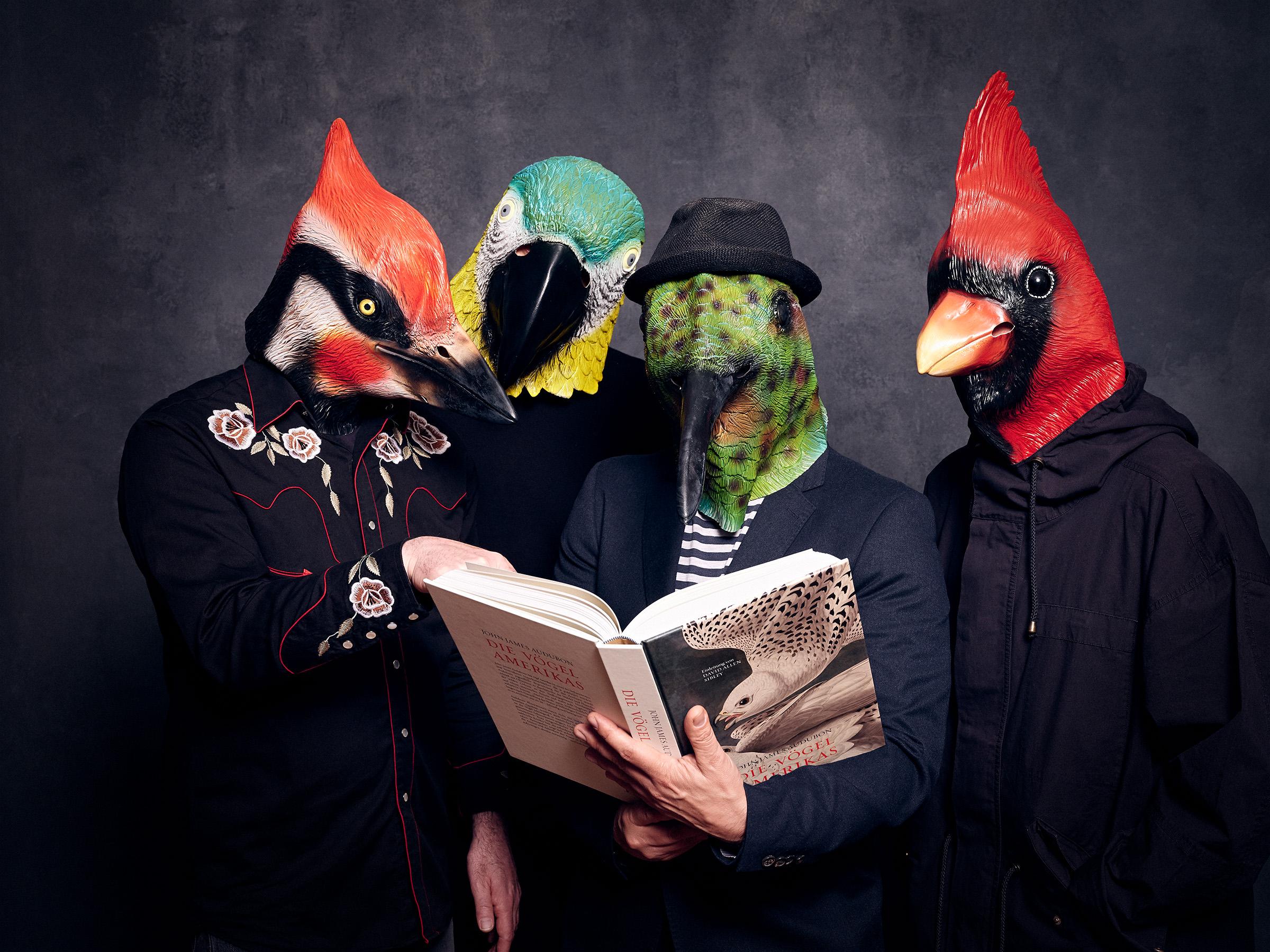 Imaginary Birds