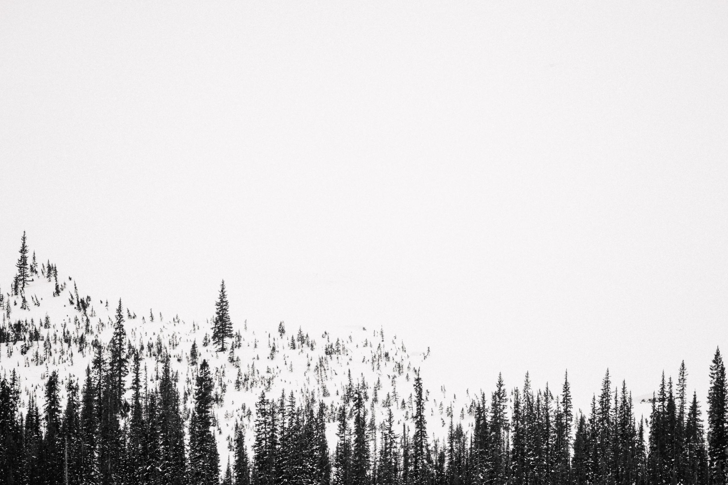 Banff_2018-17.jpg