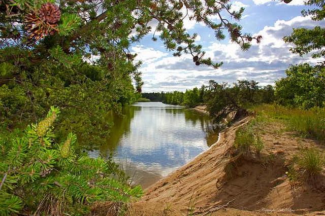 Pinnebog River.jpg