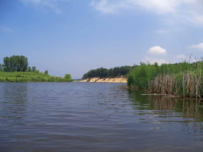 Pinnebog River 2.jpg