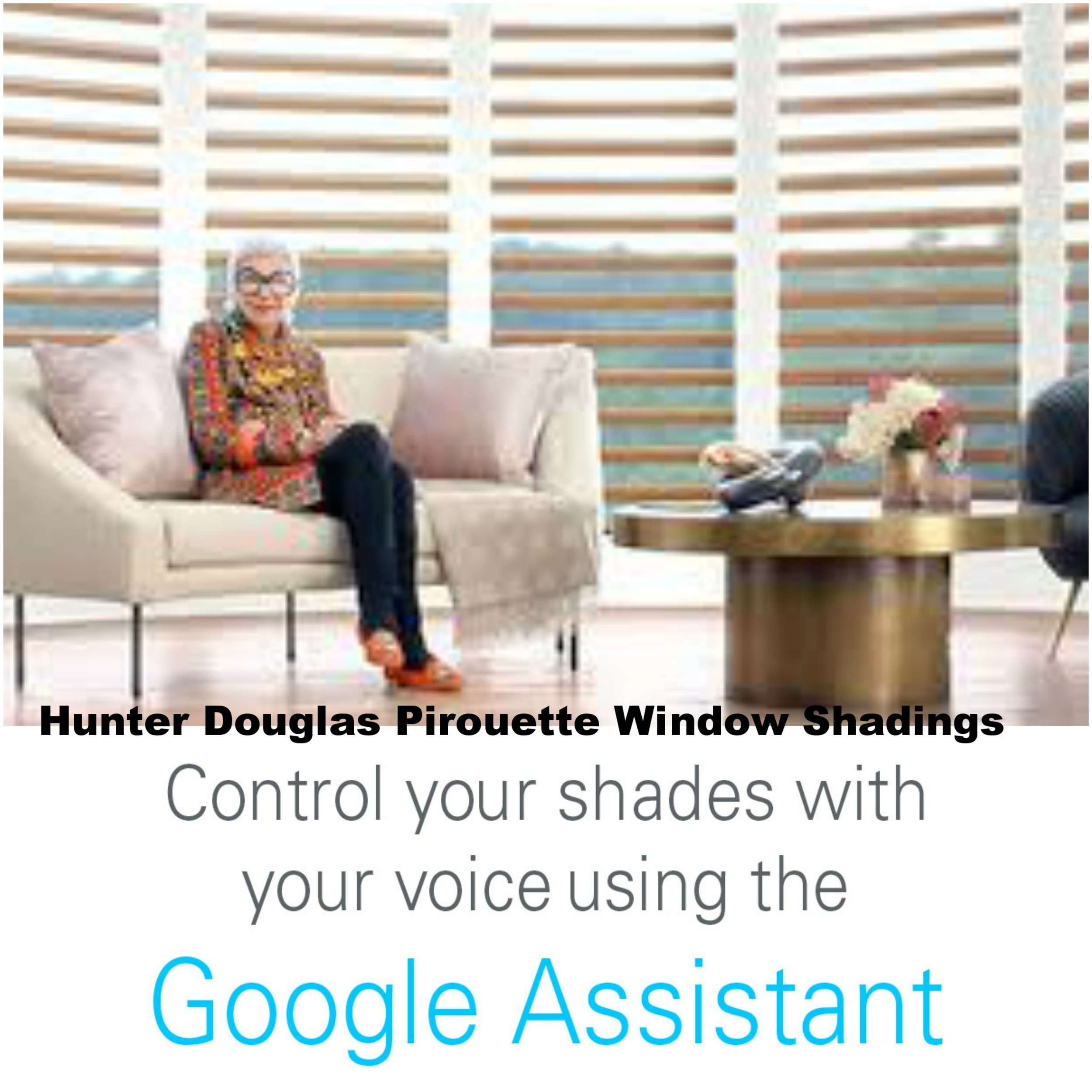 Hello Google.  Hello Alexa.  - Have you ever thought I just want to tell Google to close my shades?  The time has come!  All motorized products are now compatible with Alexa and Google home automation voice commands.
