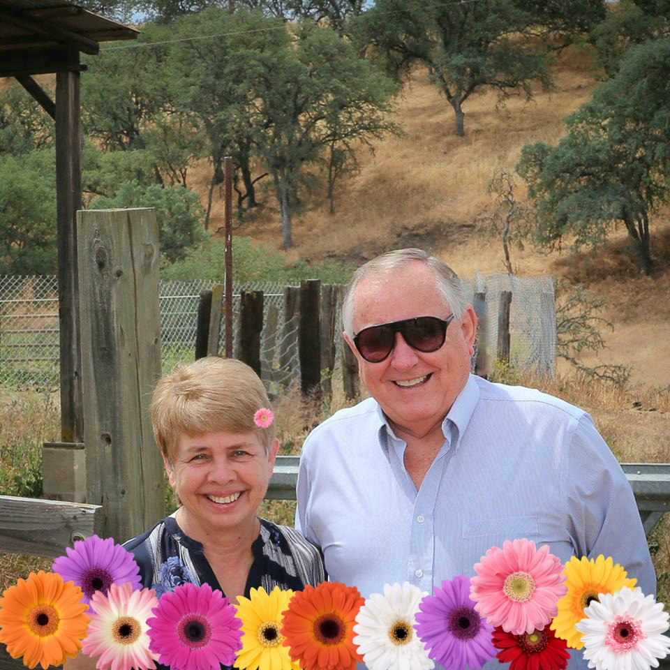 Project Coordination & Management - Owners: Sheryl and Gordon Knight