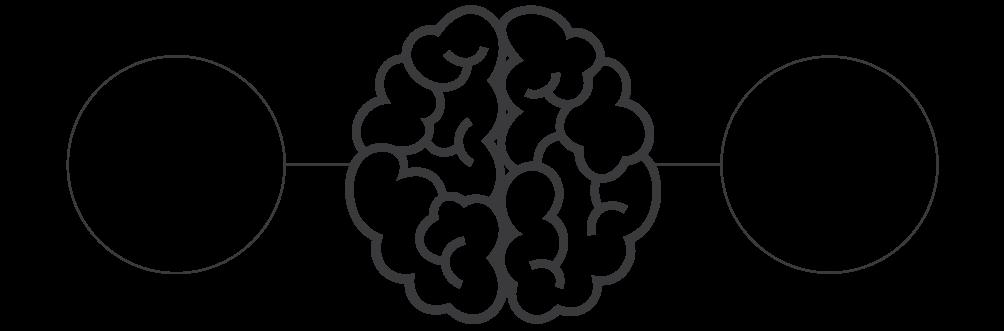 brain.png