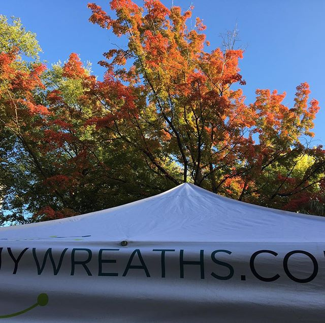colors are showing#kenyongrowers #fall color# #mywreaths.com
