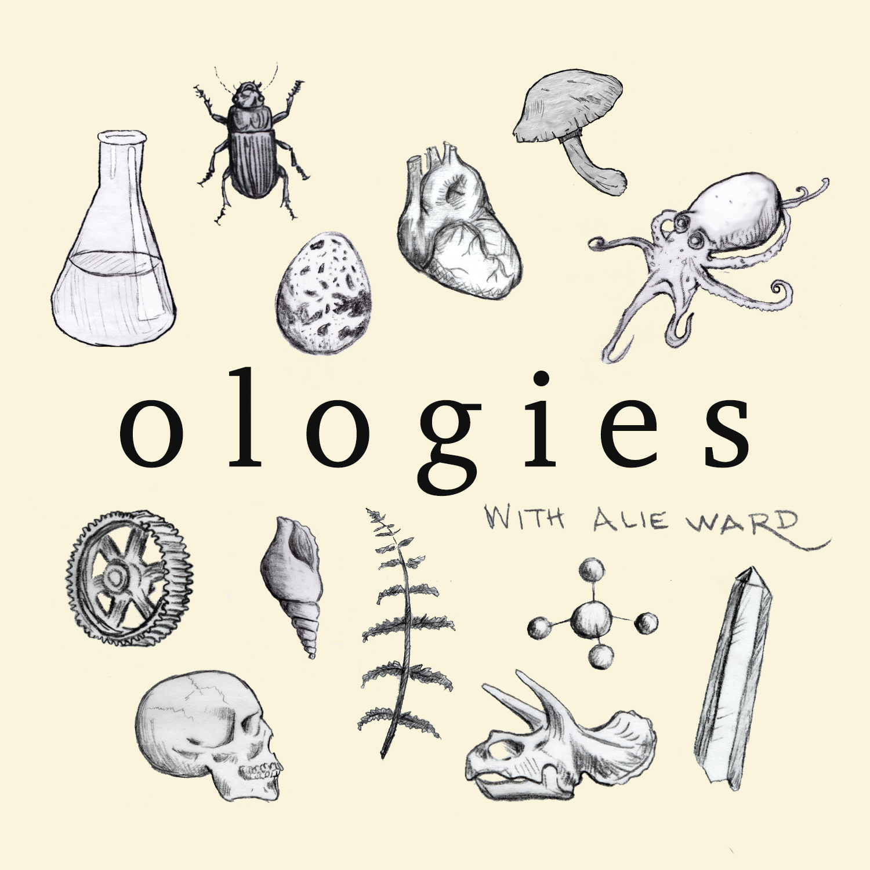 Olgies podcast