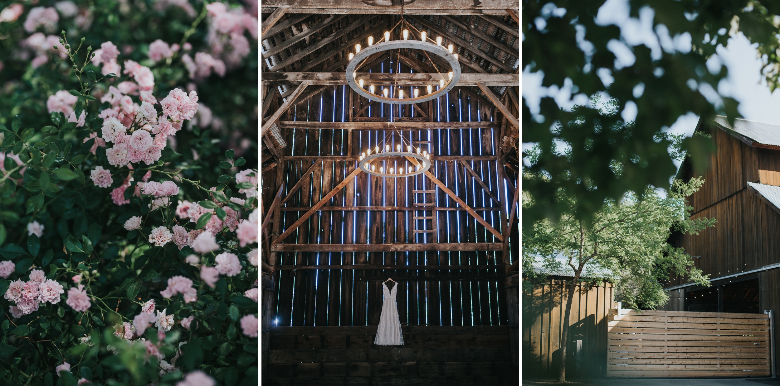 Ru's farm Wedding | Healdsburg CA | details