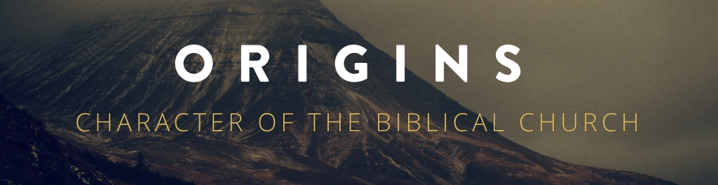 For the first three weeks of the year together we are journeying back to the origins of the church, remembering what Jesus taught about abiding, generosity, and community.