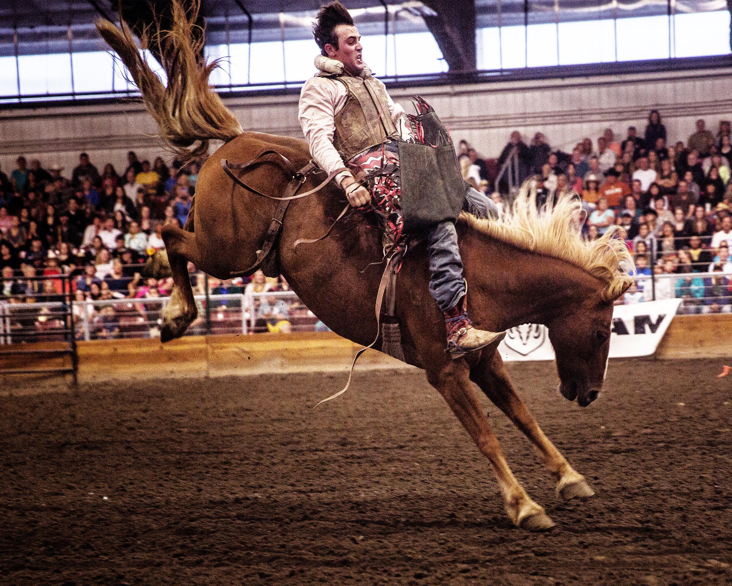 Rodeo-S 9.jpg
