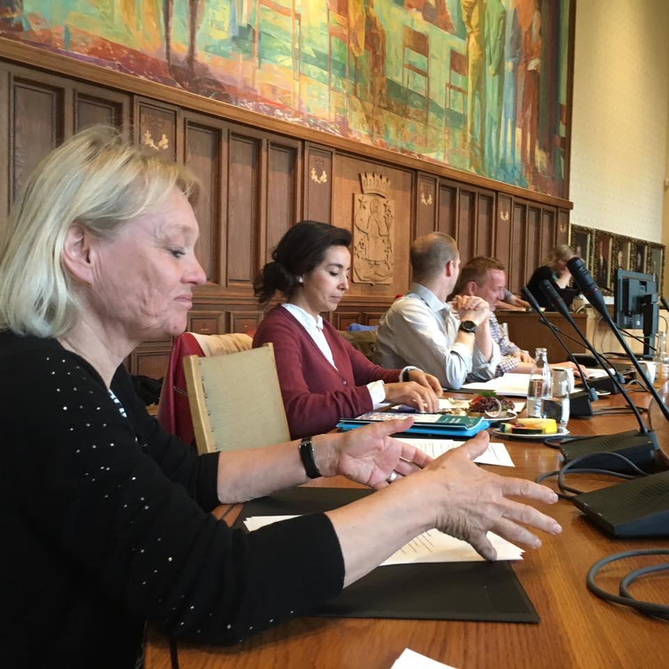 Det nye Rådet for personer med funksjonsnedsettelser i Oslo ble utnevnt 6. april. 18. mai var det møte i Rådhuset.