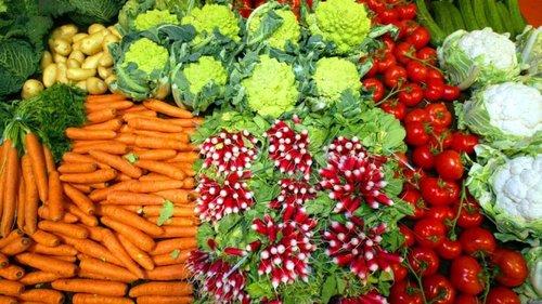 frukt-og-grc3b8nt.jpg