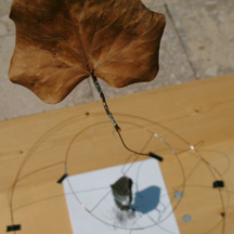 wind drawing device