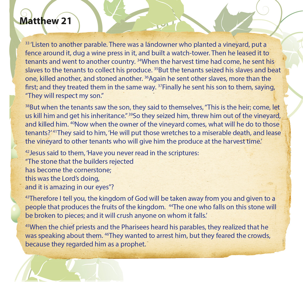 Matthew2.jpg