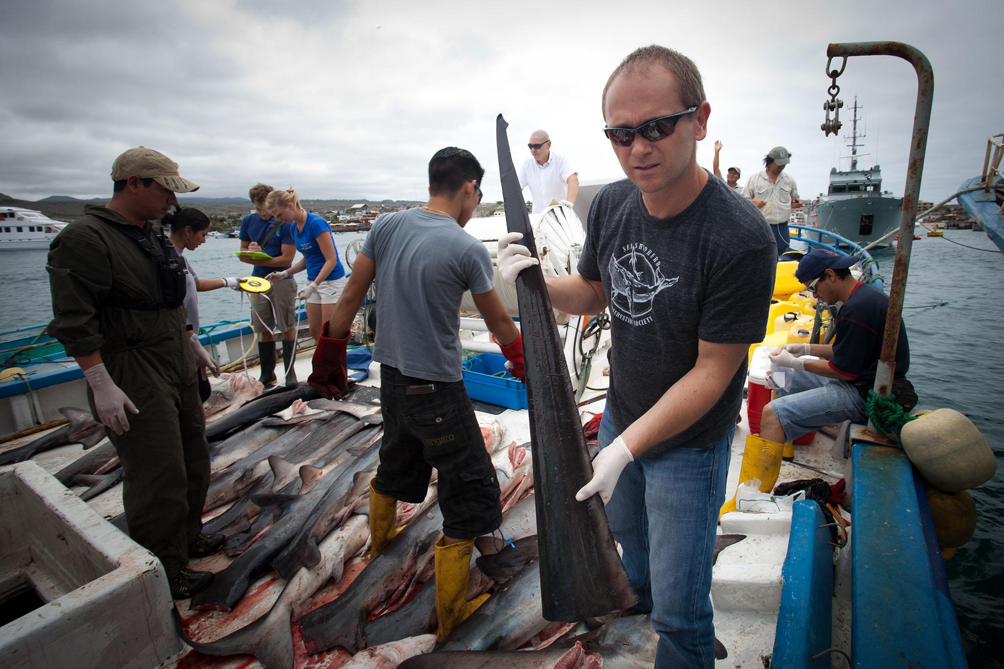 026-FP-Sea Shepherd-GLP-121118.jpg