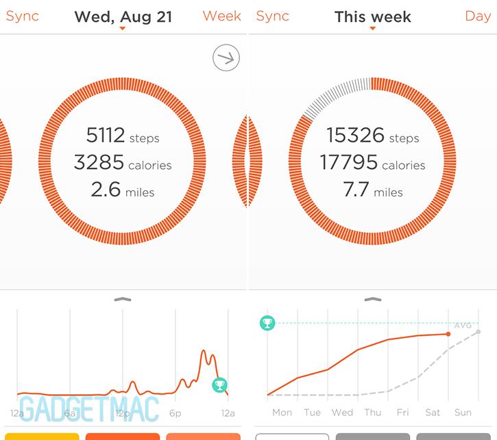 misfit_shine_ios_app_data.jpg