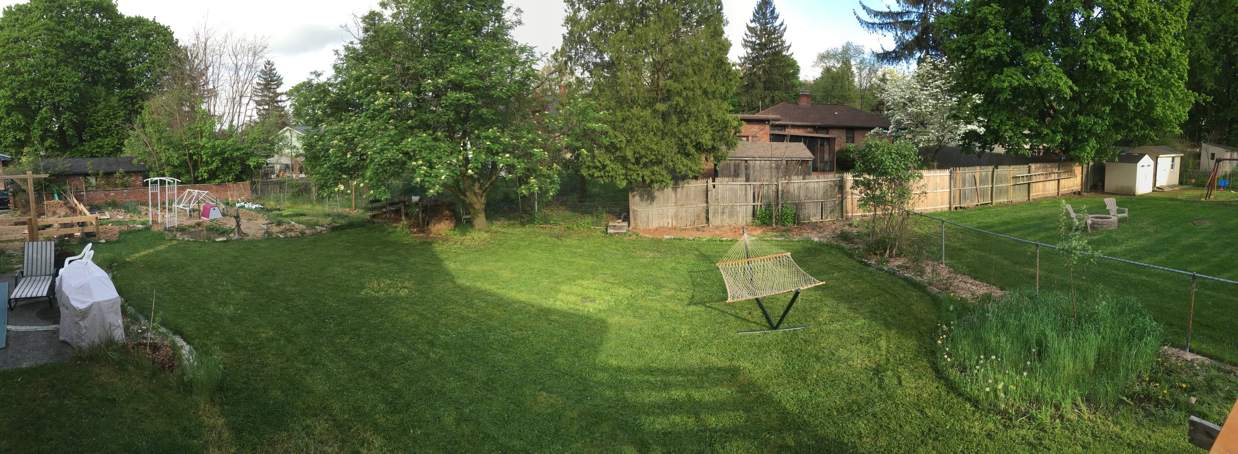 2015 - Late summer backyard view from Deck