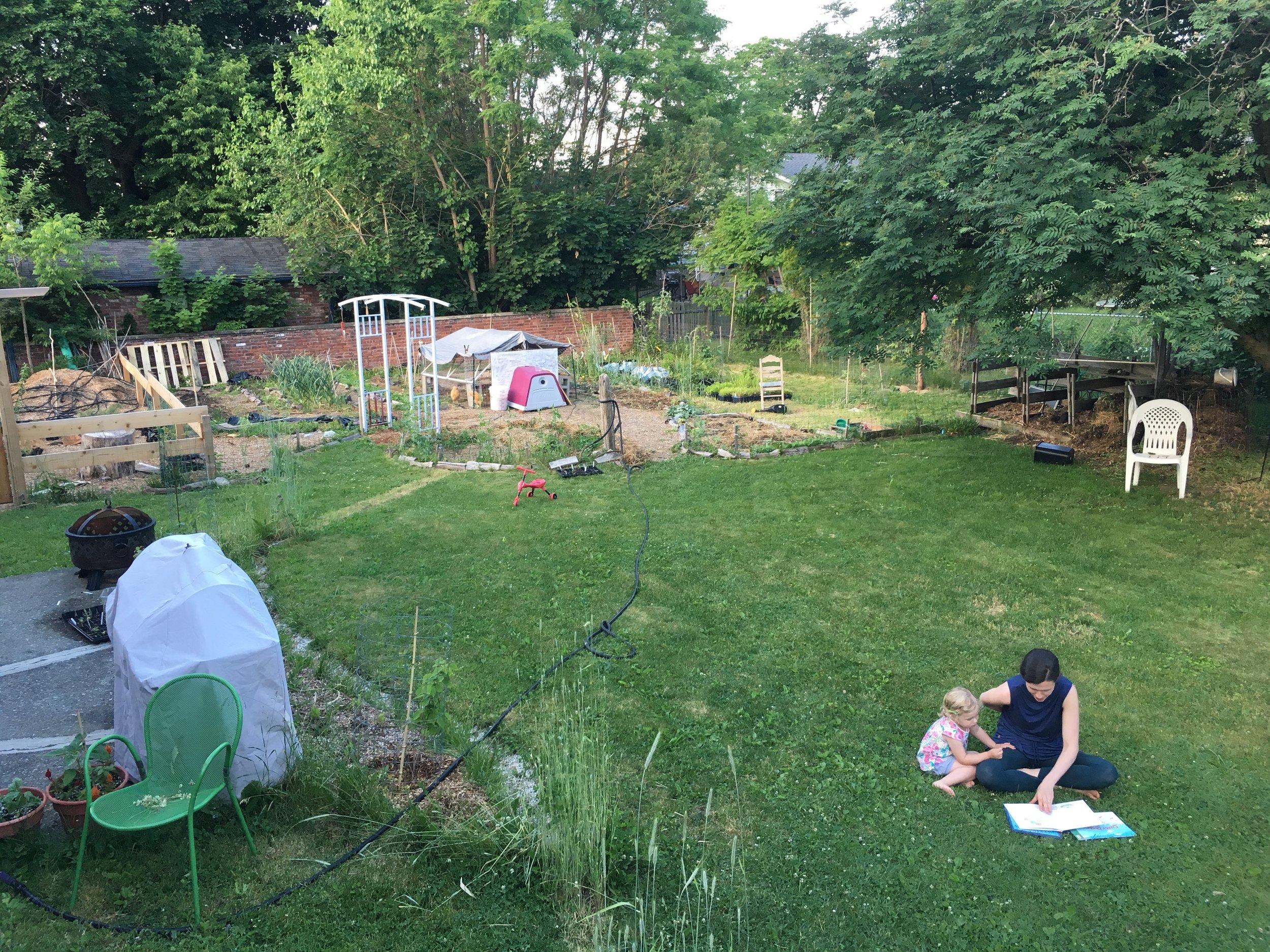 2016 - Backyard from Deck
