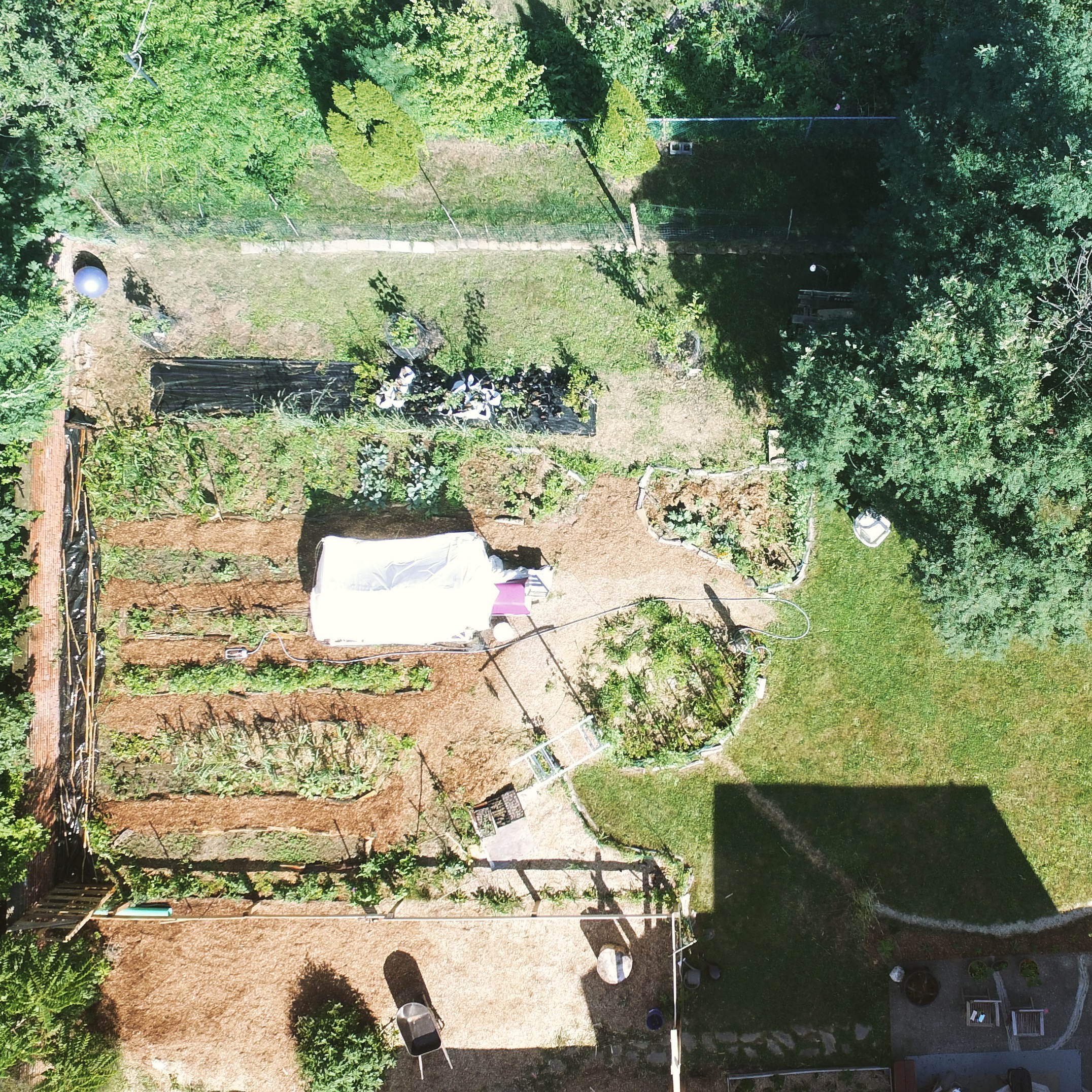 2016 - Overhead view of vegetable garden area