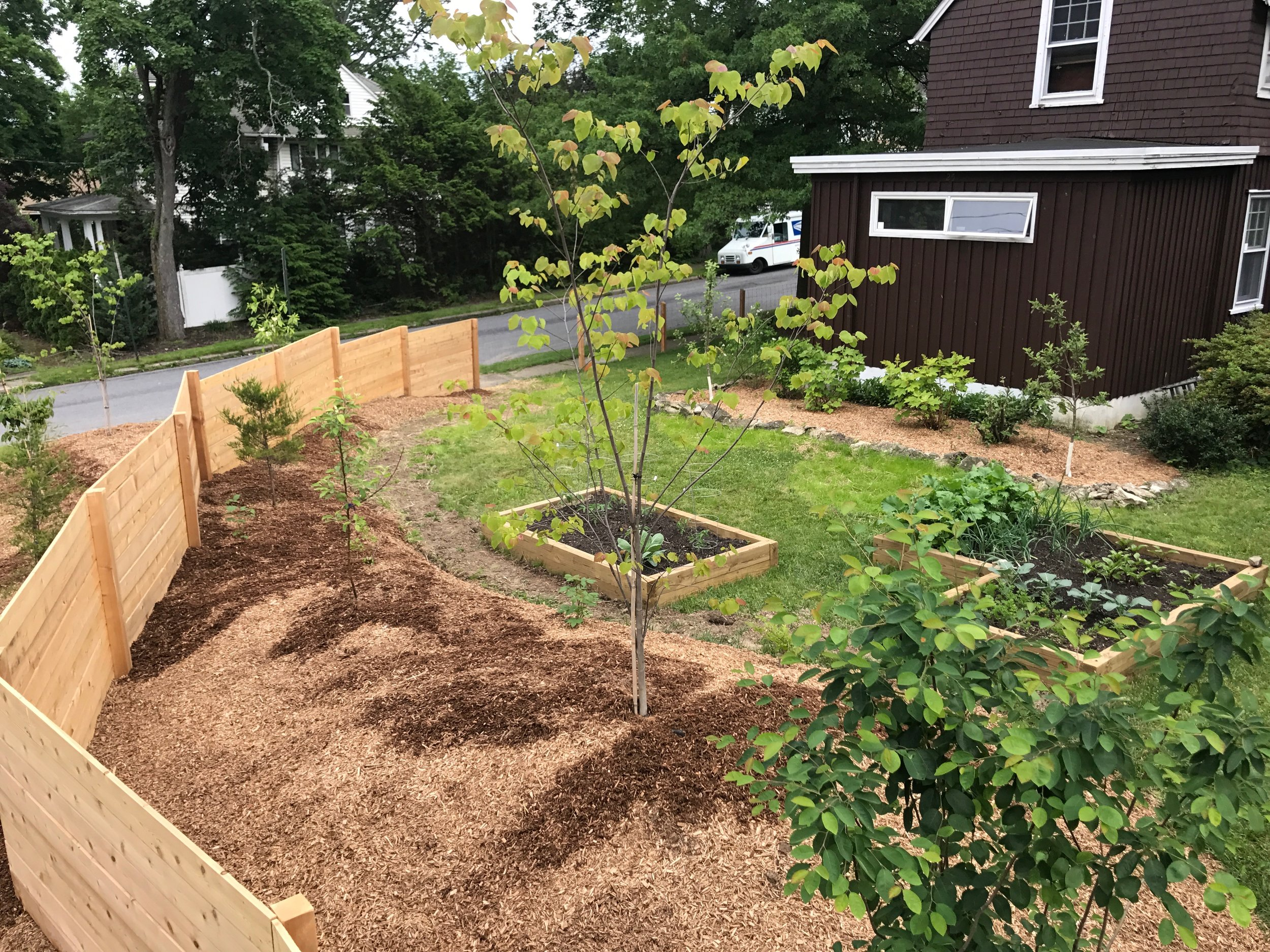 Landscape full of fruits and vegetables, including native trees, shrubs, and herbaceous species