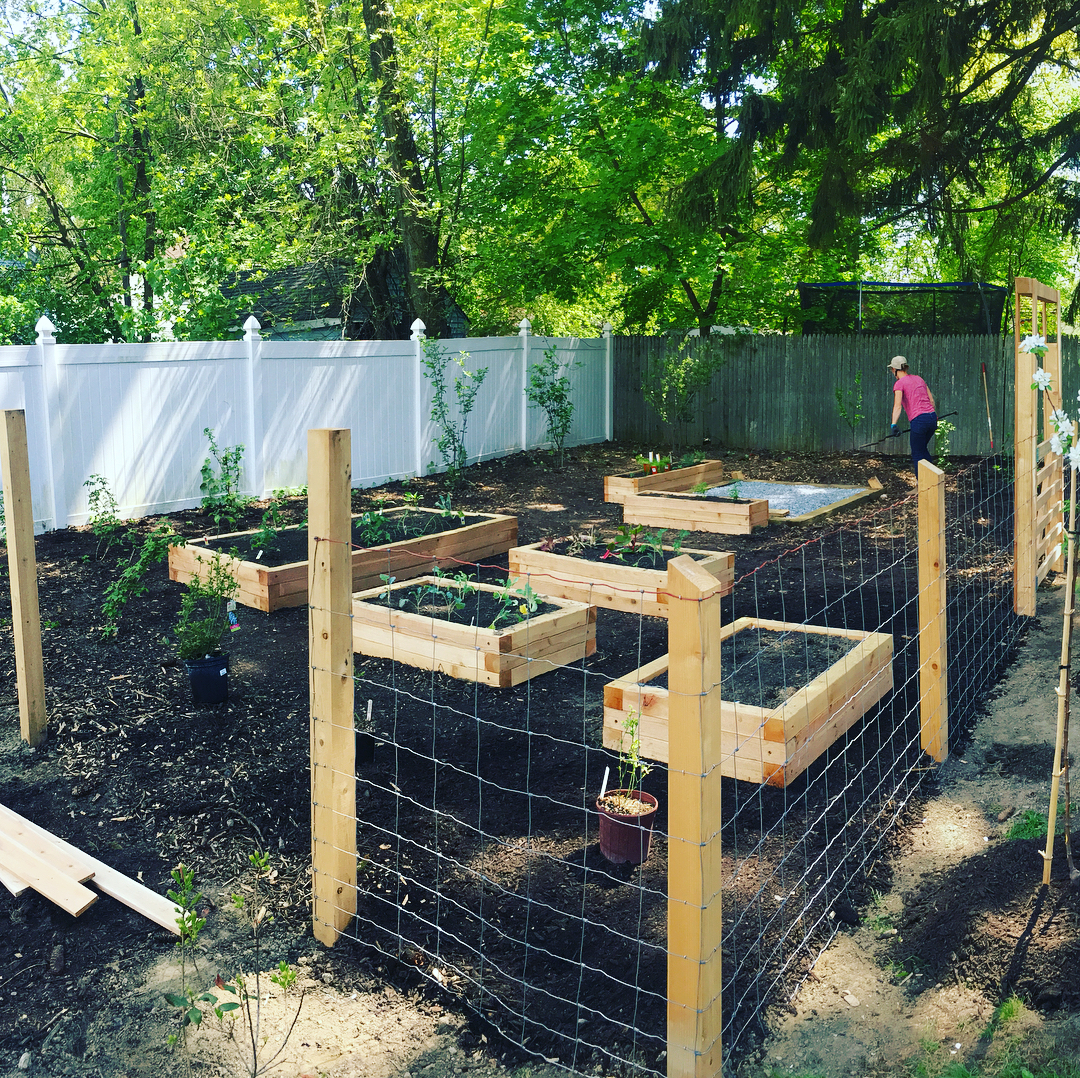 Meadow cattle fence surrounds raised garden beds