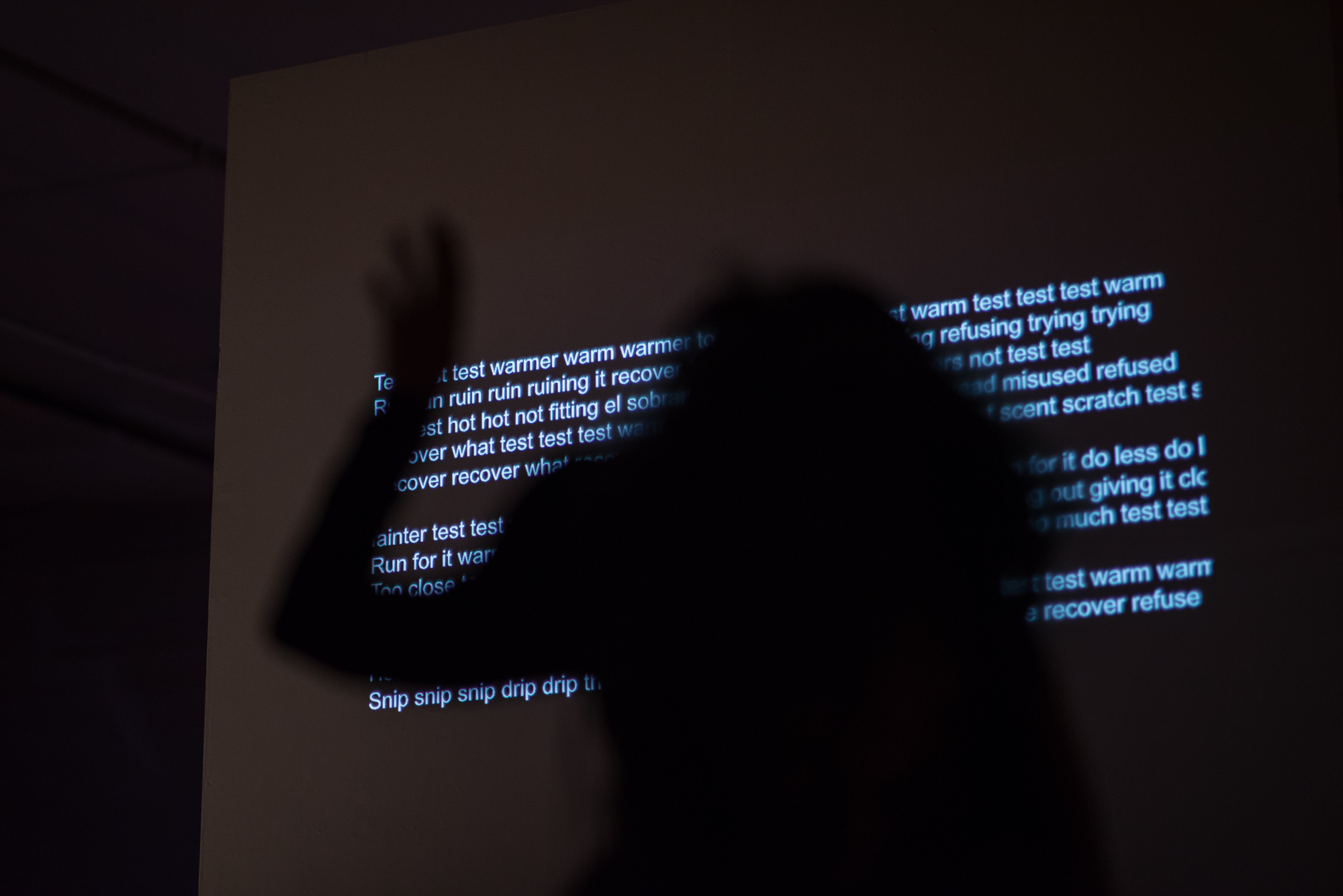 Projected text by Julie Tolentino Photo by Hillary Goidell.