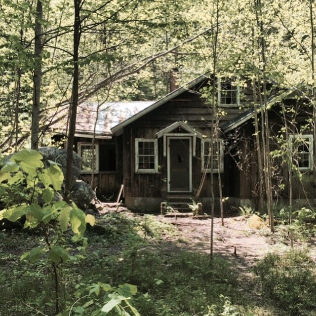 An old vacation home in Elkmont, now being reclaimed by the woods.
