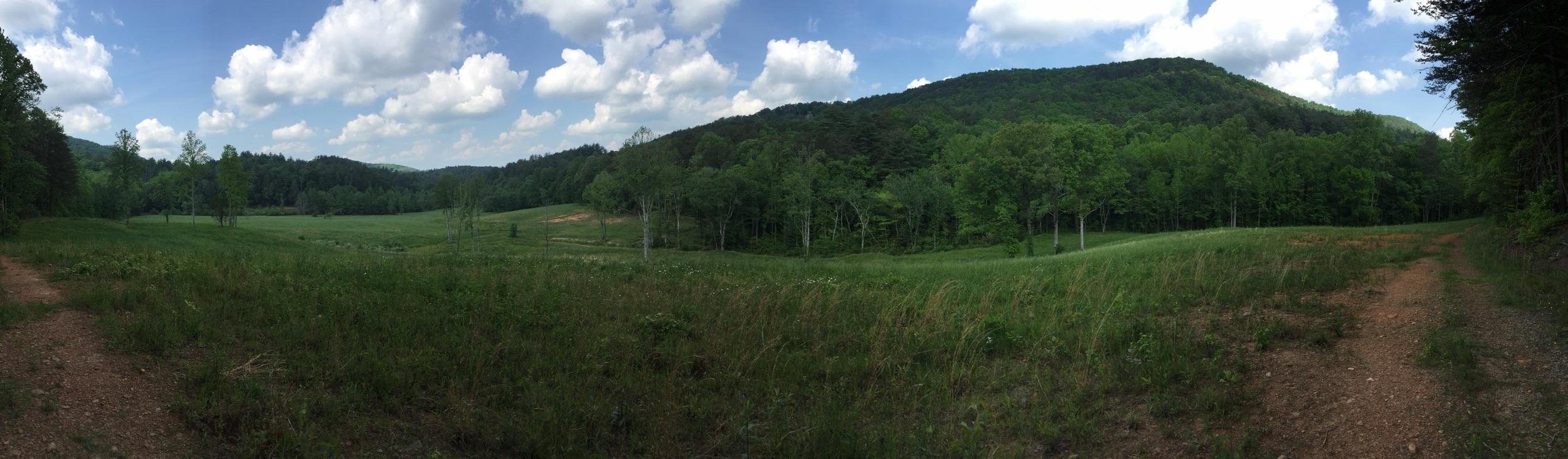 Georgia is gorgeous!