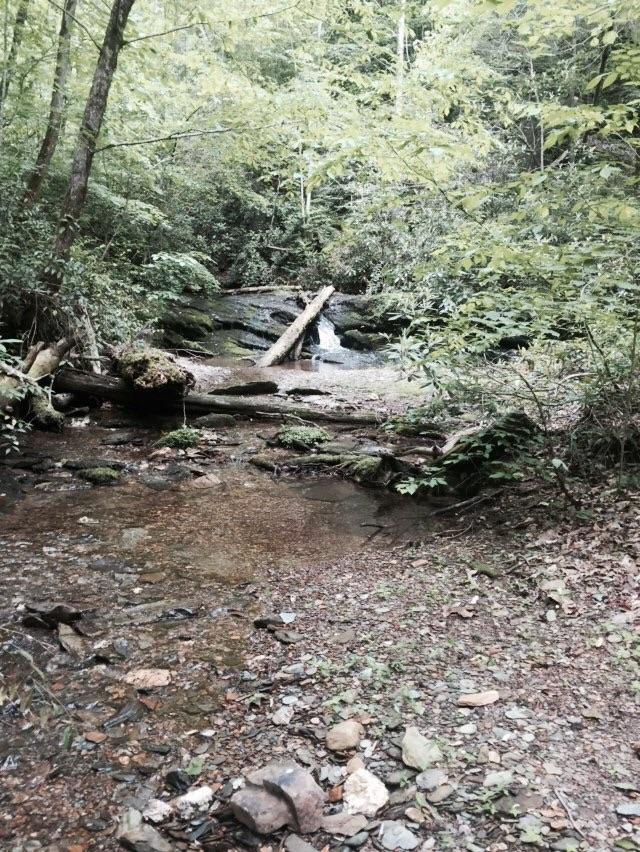 A pretty cascade from Wildcat Creek
