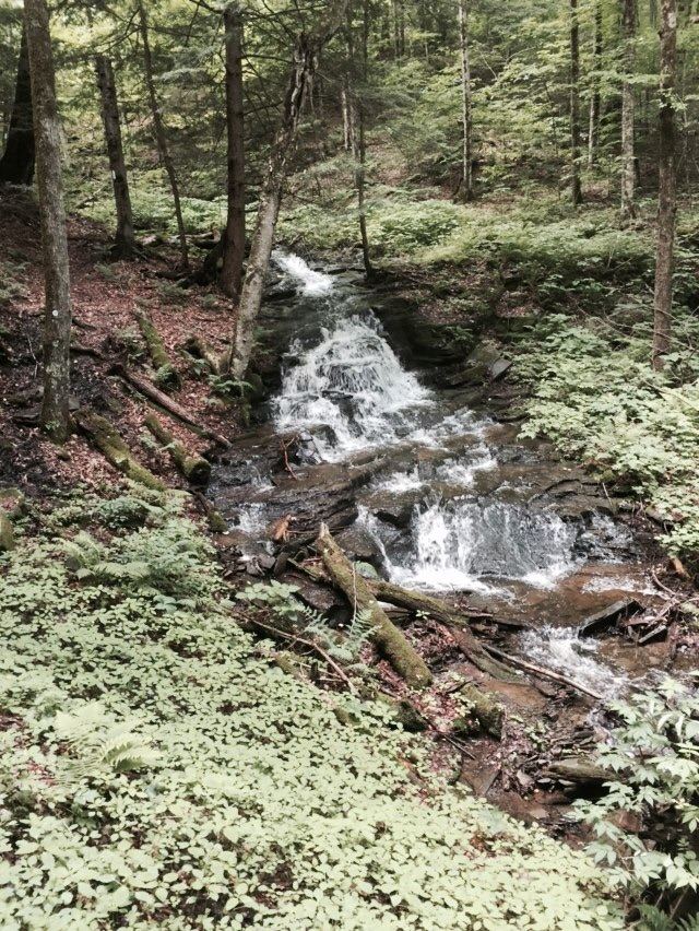 Beautiful cascades on our downhill walk.