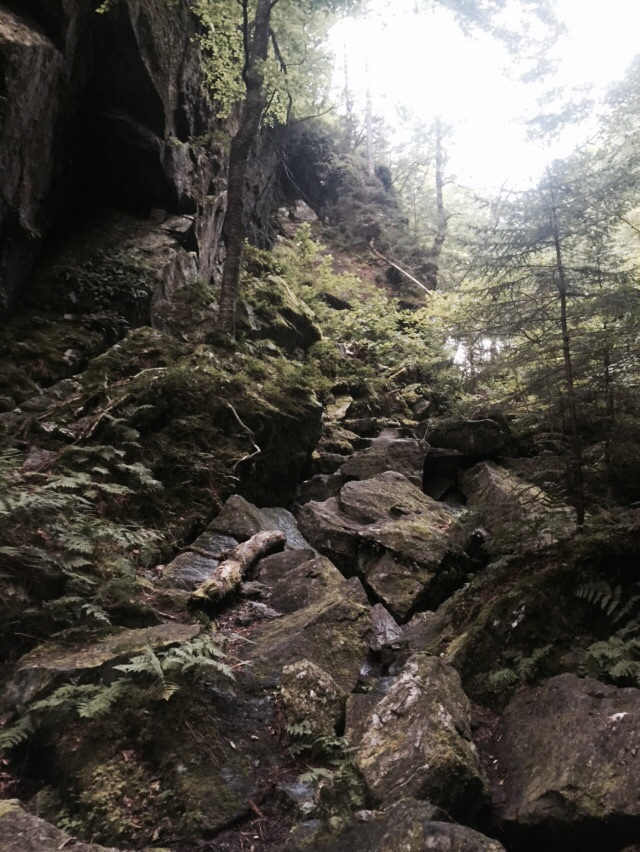 Hiking through Devil's Gulch! Yes, this is the trail