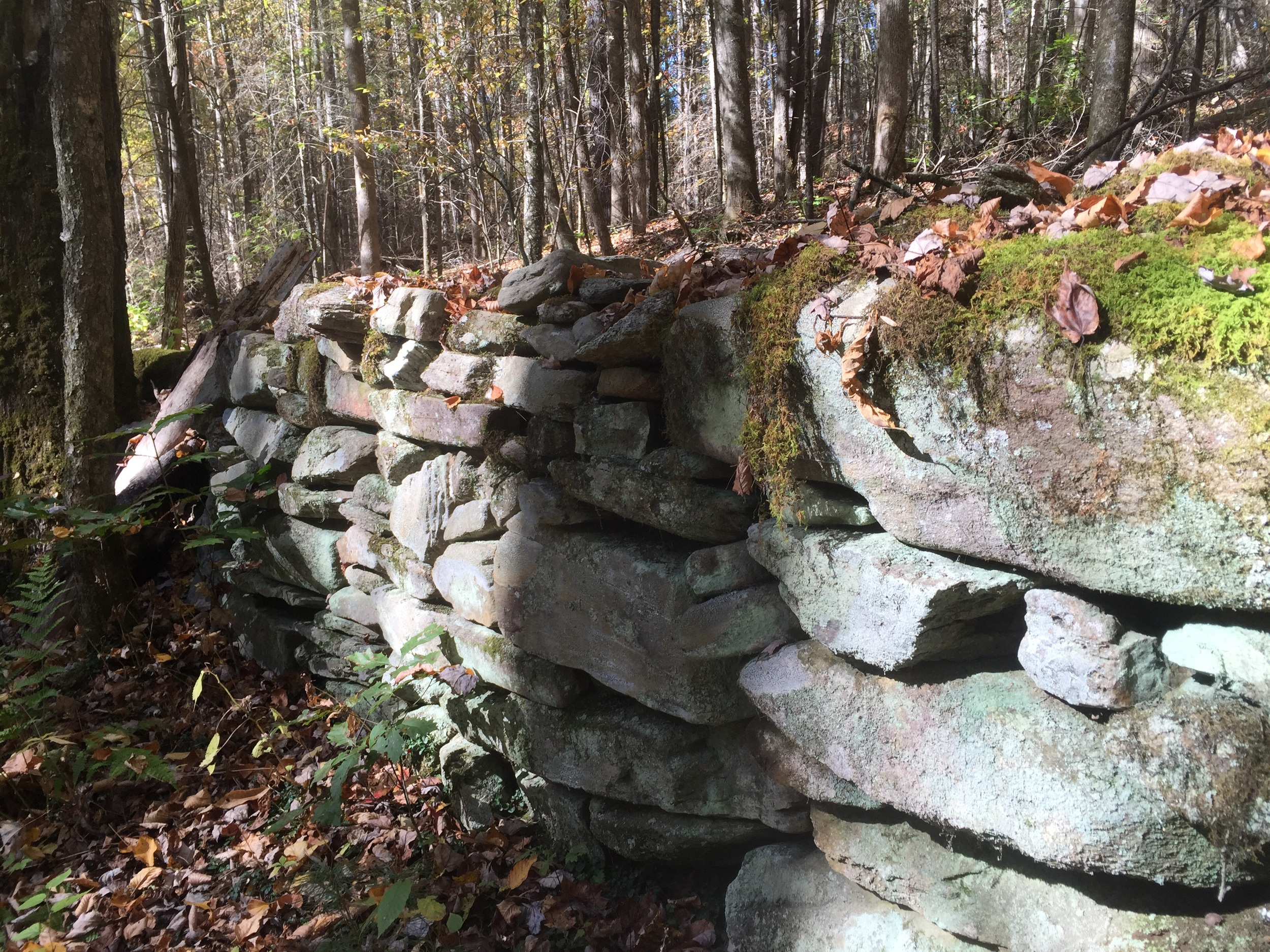 A stone wall on the Boogerman Loop hike.