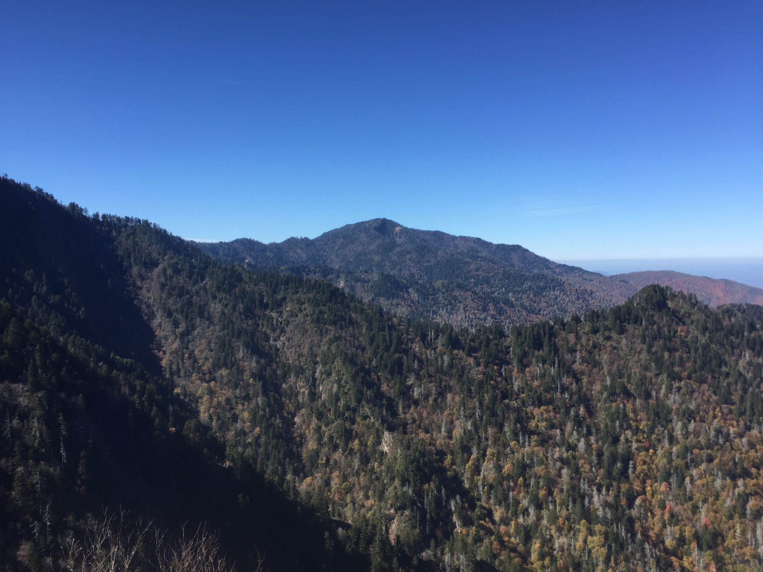 Mount LeConte from Charlie's Bunion